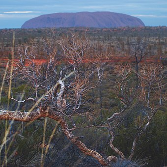 Alice Springs or Ayers Rock