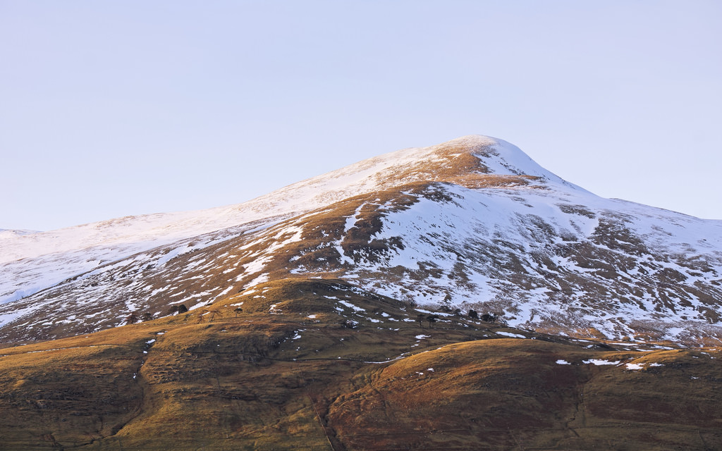 Lawers
