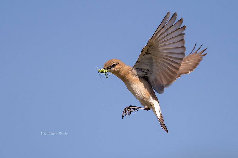 Northeast Aegean Islands, Greece