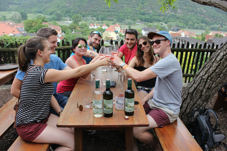 Austria Winery Trips