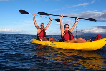 Kihei United States Kayak