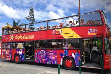 St Maarten Bus Tours