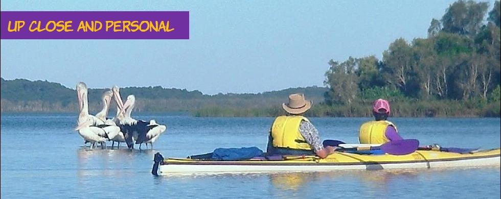 Sunshine Coast Australia Kayak