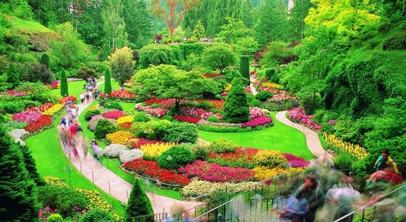 Butchart Gardens Tour From Victoria Tours