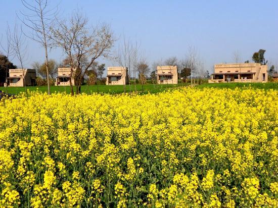Gurdaspur District India Tours