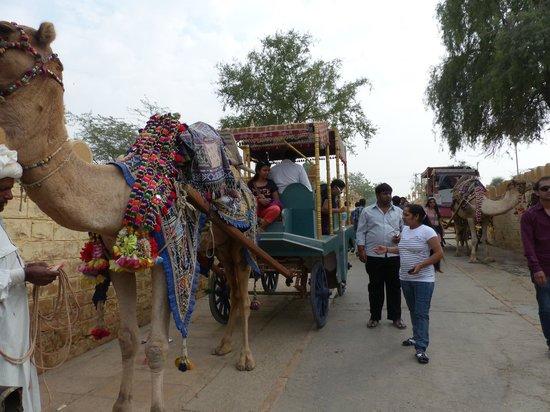 Jaisalmer India Tours
