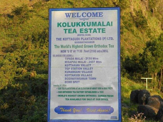 Kozhikode India Tours