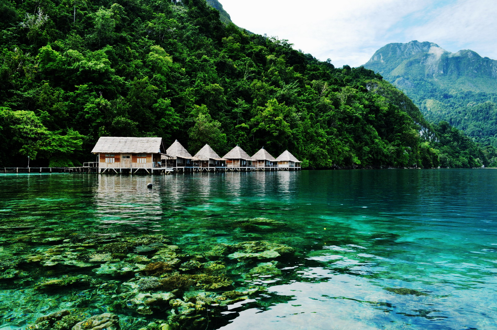 Maluku Indonesia Beaches