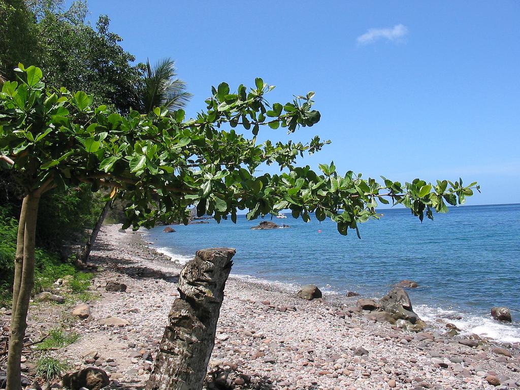 Roseau Dominica Beaches