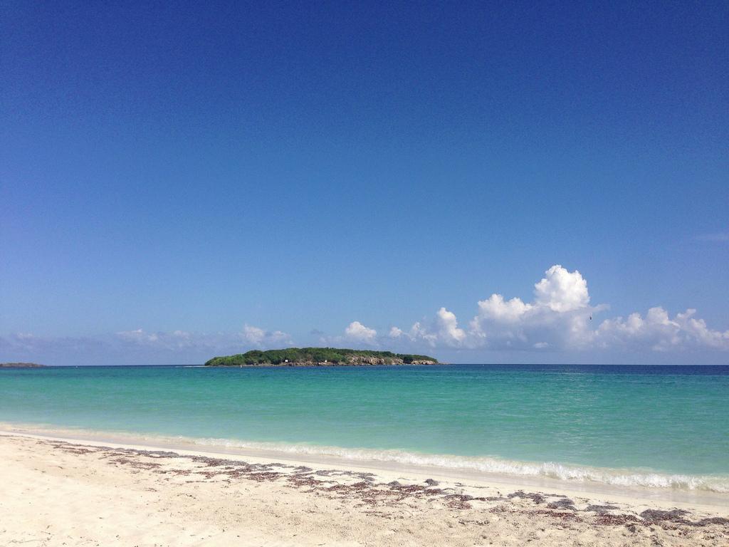 Isla de Vieques Puerto Rico Beaches