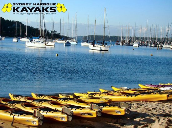 Mosman Australia Kayak