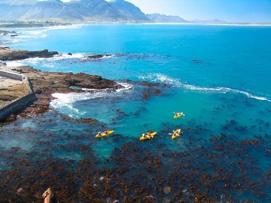 Hermanus South Africa Kayak