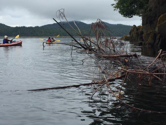 Ketchikan United States Kayak