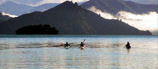 Anakiwa New Zealand Kayak