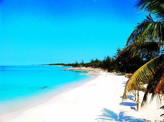 Cook Islands Snorkeling
