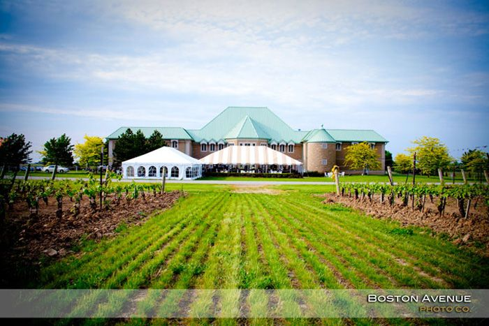Canada Winery Trips