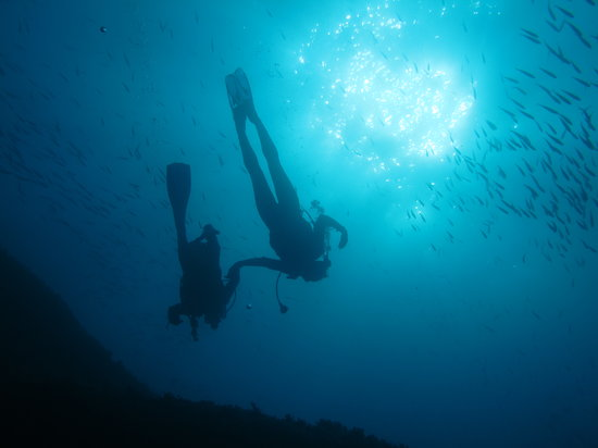 France Dive Trips
