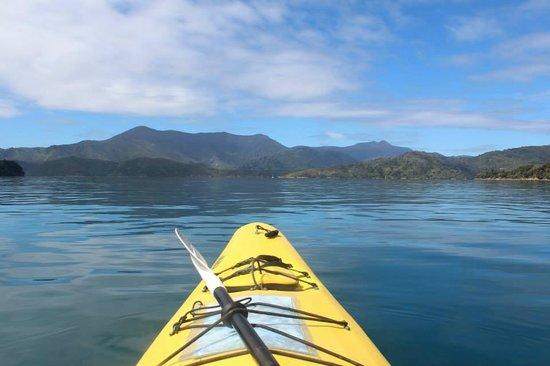 Picton Chile Kayak