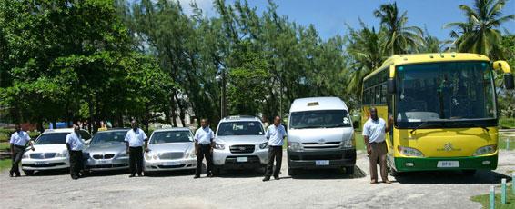 Lower Estate Barbados Tours