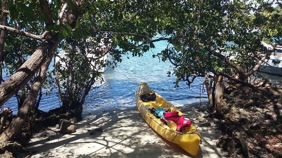 Le Robert Martinique Kayak