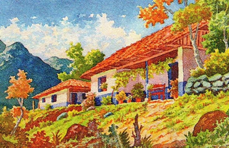 Drake Bay Costa Rica Tours