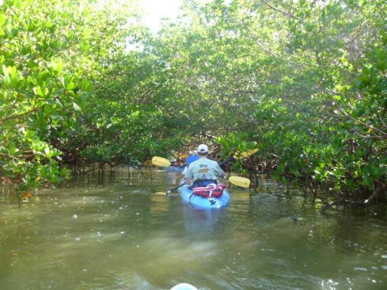 Bonita Springs United States Kayak
