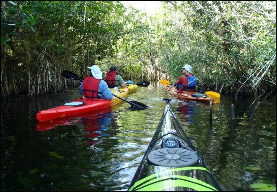 Everglades City United States Kayak