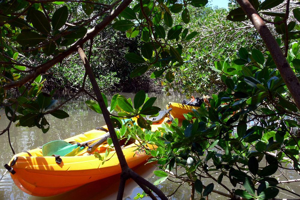 Ducos Martinique Kayak