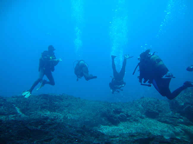 Portugal Dive Trips