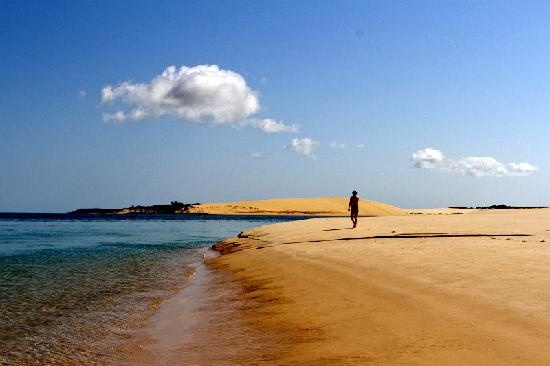 Mozambique Dive Trips
