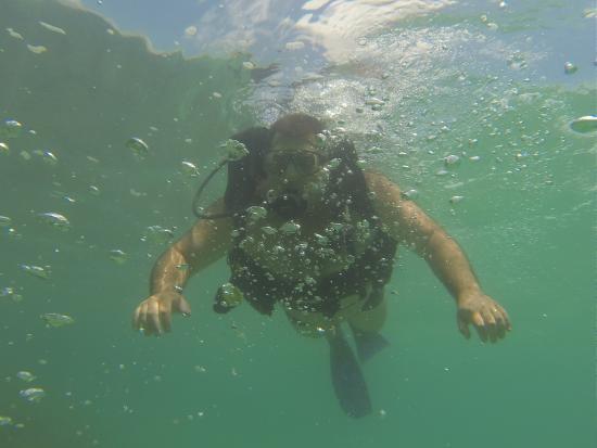 Brazil Dive Trips