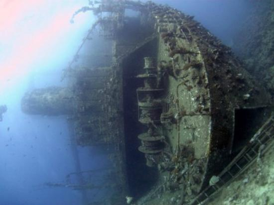 England Dive Trips