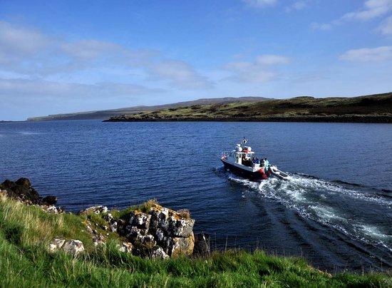 Scotland Dive Trips