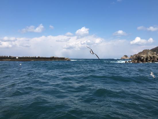 Japan Boat Trips
