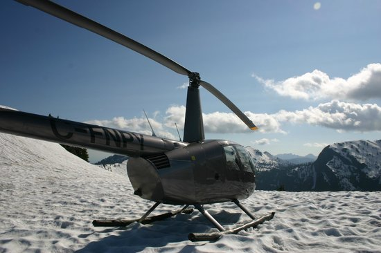 Delta British Columbia Helicopter Rides