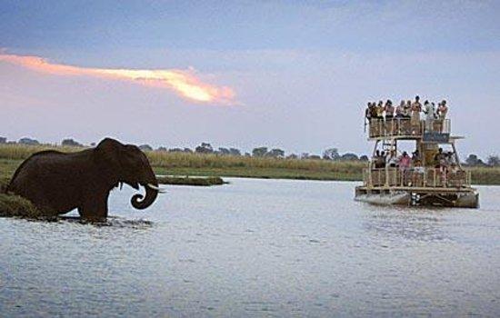Botswana Boat Trips