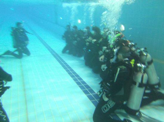 Qatar Dive Trips