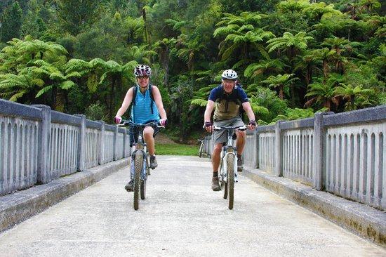 New Zealand Mountain Bike