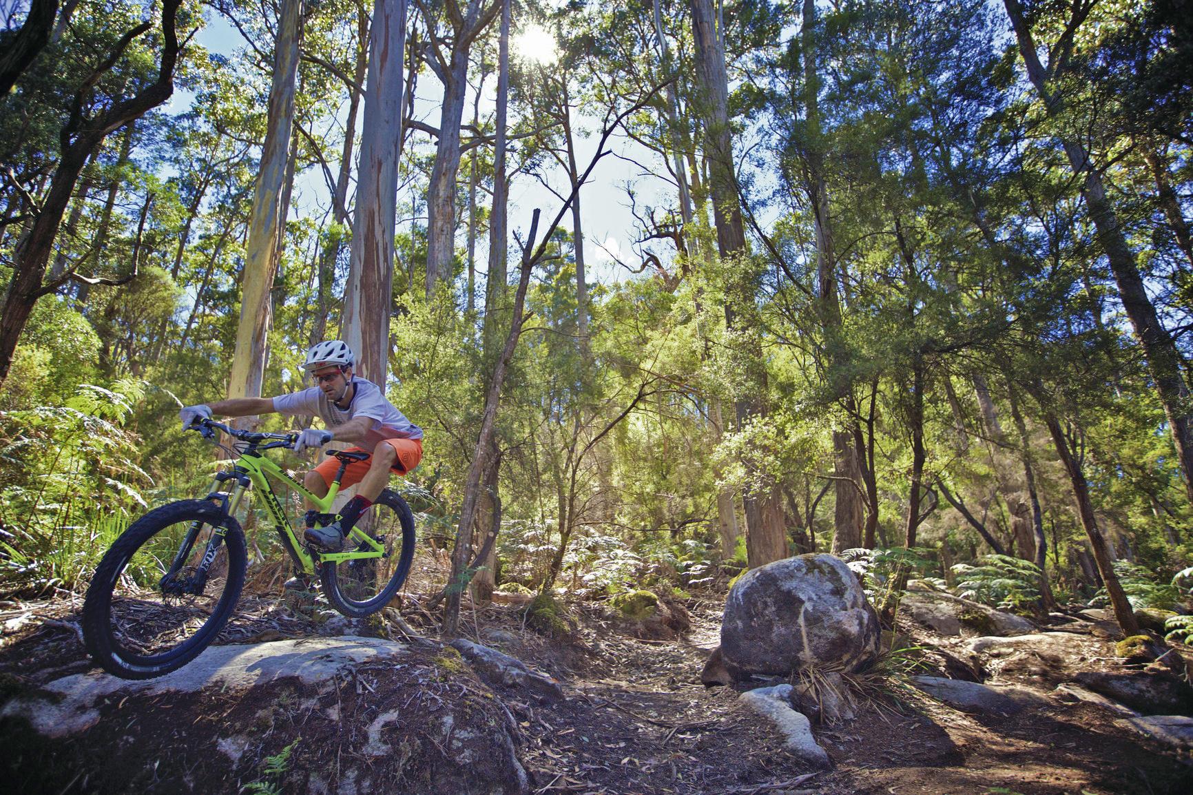 Derby Australia Mountain Bike