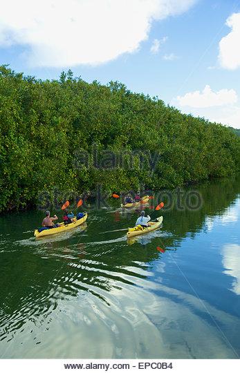 Hanalei United States Kayak