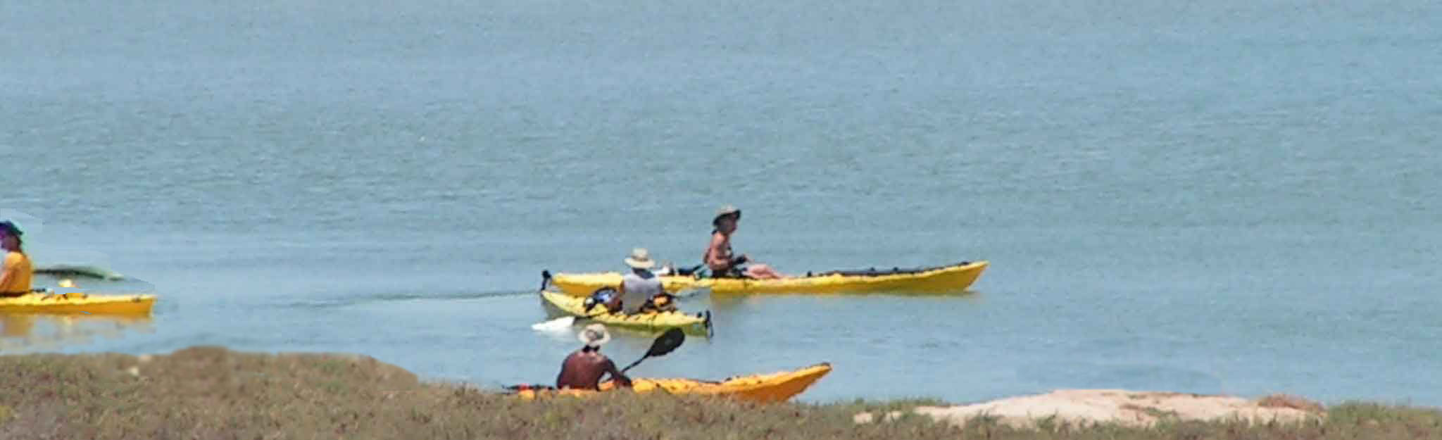 Puerto Penasco Mexico Kayak
