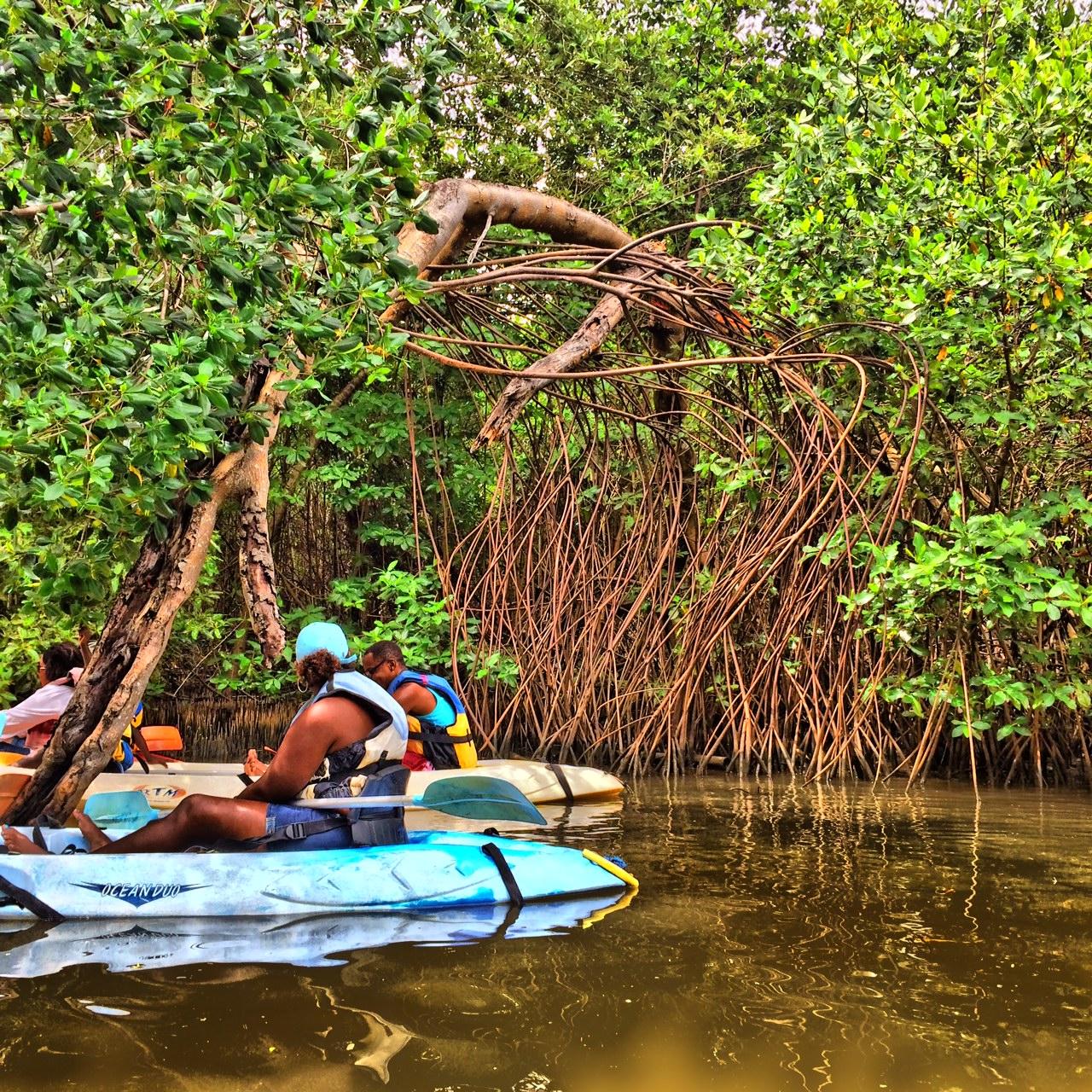 Trois-ilets Martinique Kayak