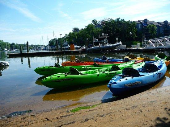 Annapolis United States Kayak