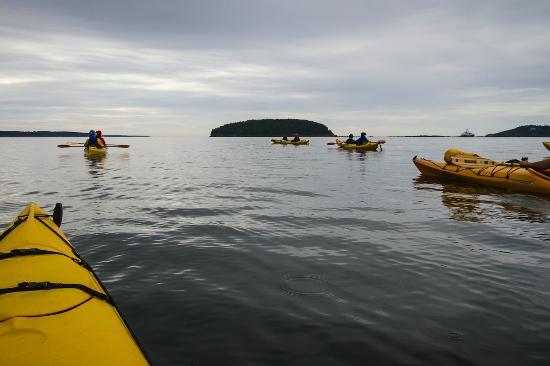 Bar Harbor United States Kayak