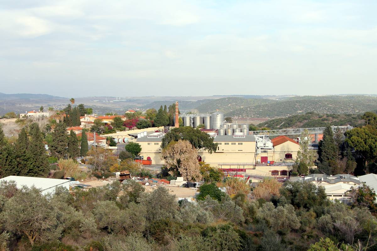 Israel Winery Trips