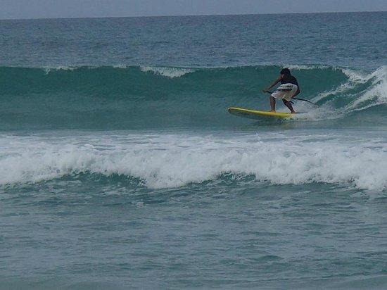 Malaysia Surfing