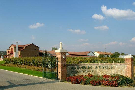 Hungary Winery Trips