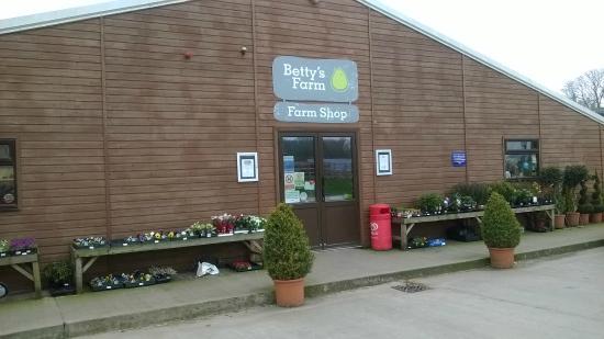 Derby united kingdom Shopping