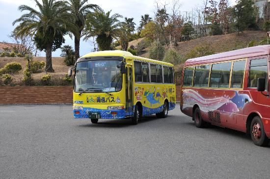 Kumamoto Prefecture Japan Bus Tours
