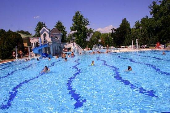 Hungary Swimming